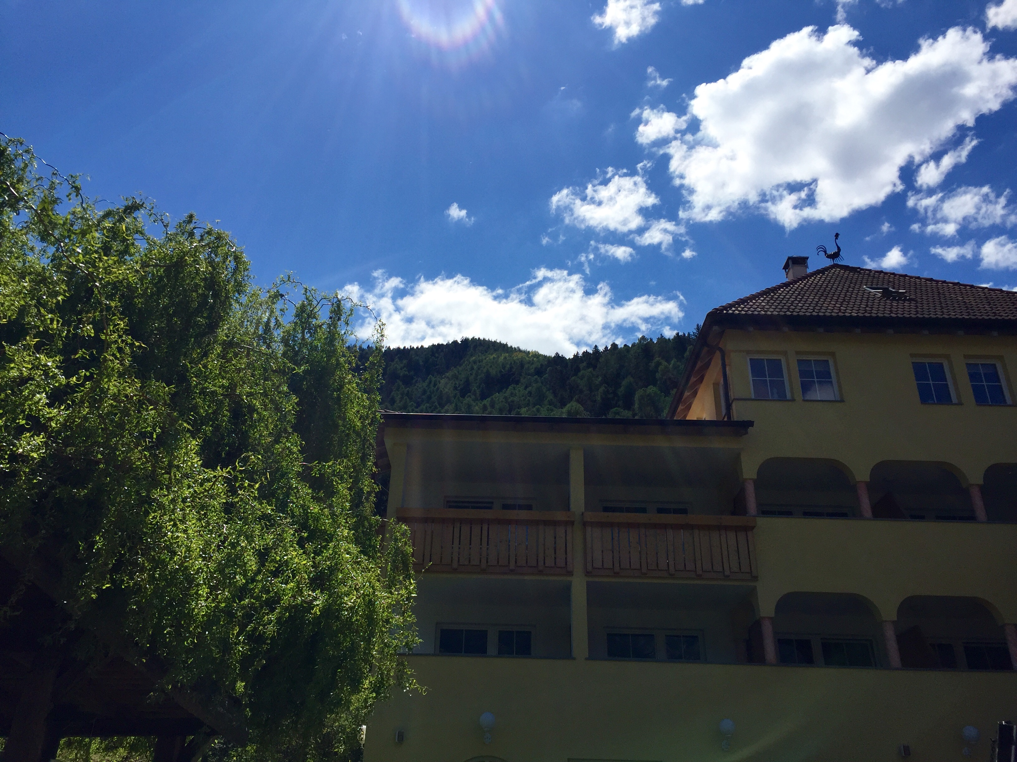 Landhotel Latscherhof ***s - Hotel