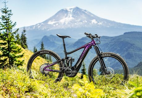 Liv Intrigue X E+1 E Mountainbike