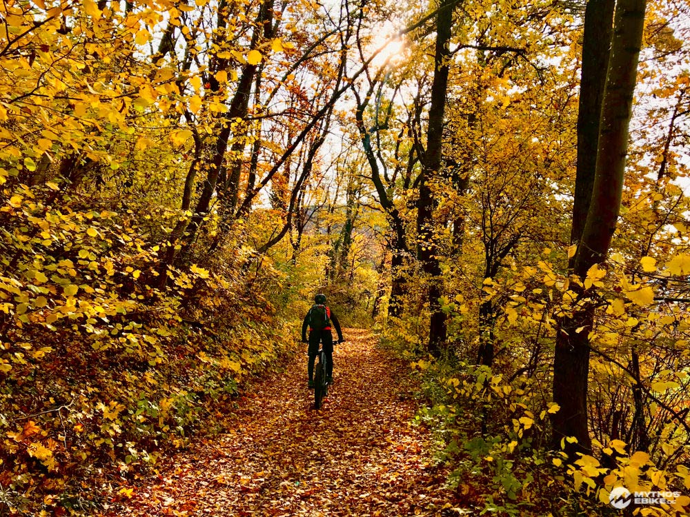Alb-Crossing Herbstwald mit ebike