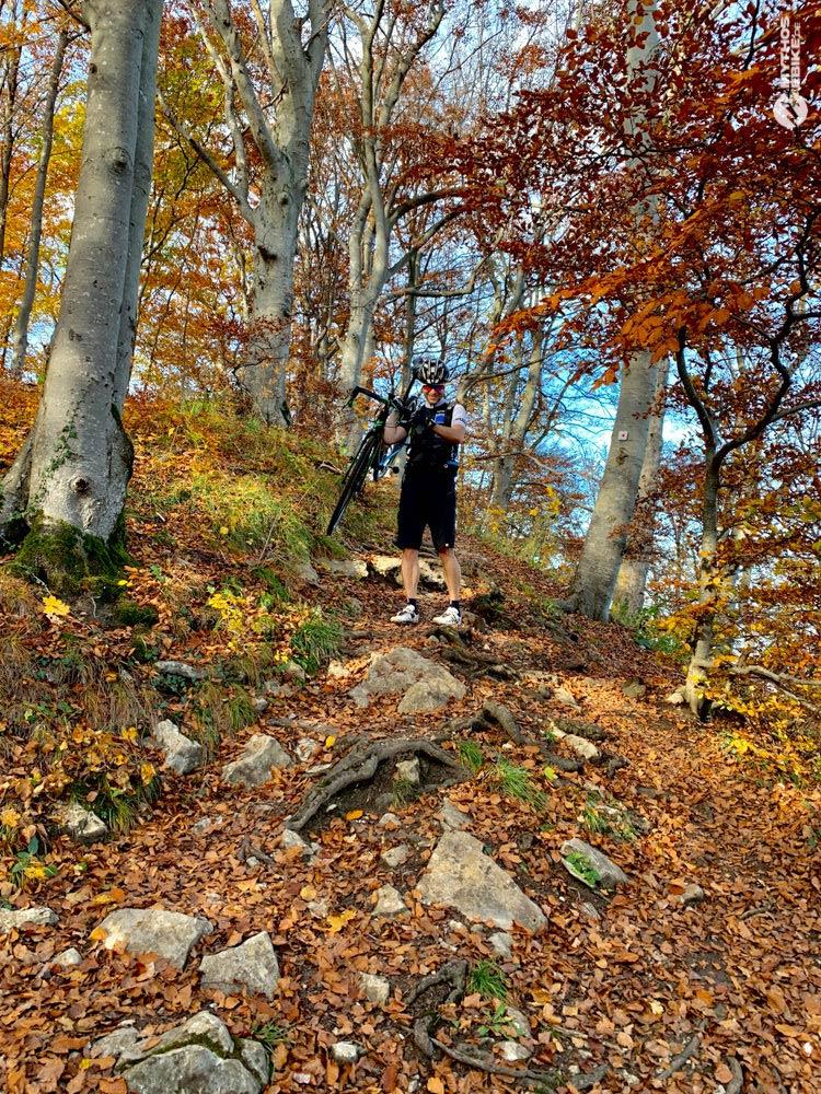 Alb-Crossing Crosser Herbstwald